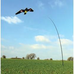 Last van vogels? Verjaag vogels met een vlieger!