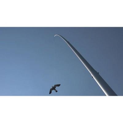 Aluminium paal 8,5 meter met vlieger Black Hawk Kite