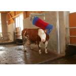 Cowcleaner Swing Koeborstel