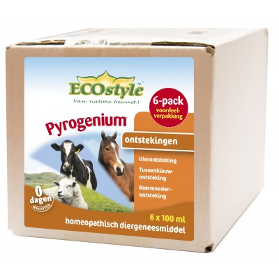 Ecostyle Pyrogenium 6-pack 6x100ml