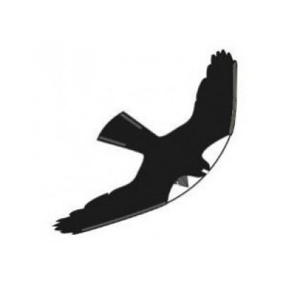 Black Hawk Kite 10 meter
