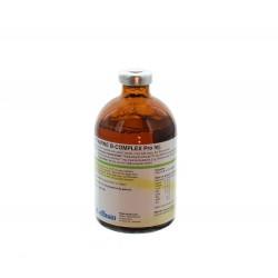 Vitamine B-Complex Injectie (100 ml)