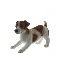 Hond jack russel bruin/wit